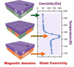 "Schuller Group Research Findings ""Giant Magnetic Effects Induced in Hybrid Materials"" Published on DOE Website"