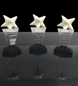 Ivan K. Schuller, Distinguished Professor awarded 2014 NTN NanoStar Award